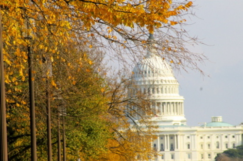 Capitol_fall_2